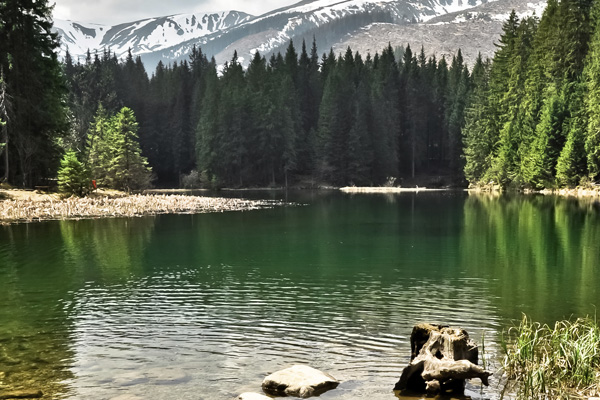 Vrbicke lake in Tatra mountains. Slovakia